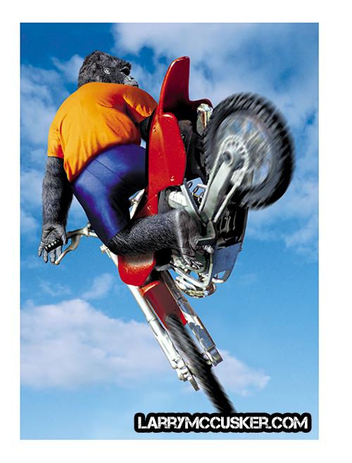 Gorilla Motocross