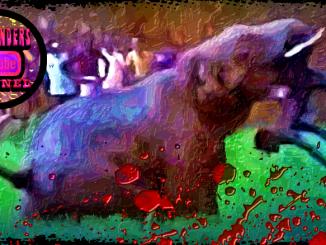 Elephant attack India
