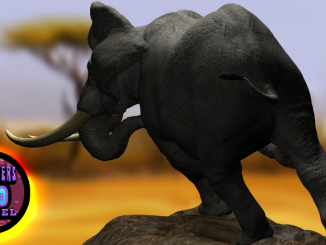 Elephant Rear Banner